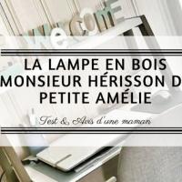 Monsieur Hérisson de Petite Amélie