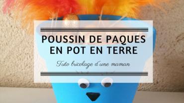 Screenshot_2019-03-02 Tuto du Poussin de Pâques en pot en terre