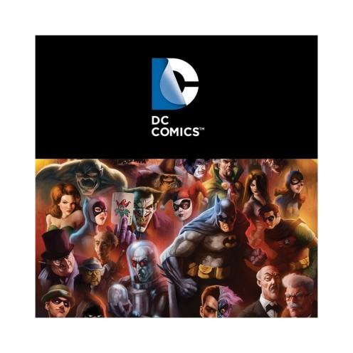 box-adulte-100-dc-comics