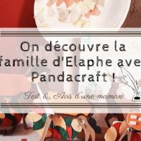 On découvre la famille d'Elaphe avec Pandacraft