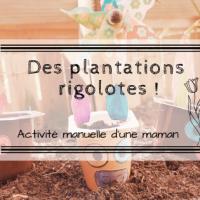 Des plantations rigolotes !